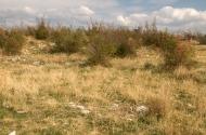 Središnji plato naselja Guvnine