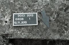Doci 2013