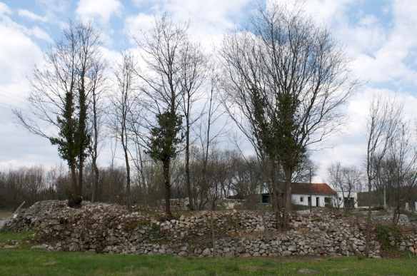 Šipkova glavica, Doci, Gornja Vitina, lokalitet prije početka arheoloških istraživanja